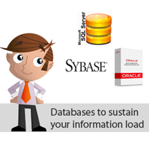 Databases to sustain your information load