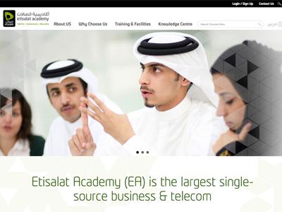 Website Design and Development Portfolio   RSI Concepts
